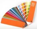 RAL E2 (490 Color)